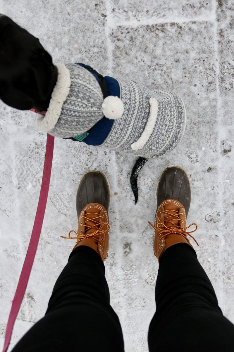 DC Winter Essentials You Need to Survive the Season | Katie Actually